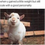 When You Gained A Little Weight But Still Look Cute